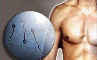 Все про лечение мужского бесплодия