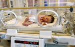 8 заблуждений: чем суррогатное материнство отличается от ЭКО?