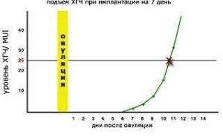 Таблица хгч после проведения эко