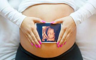 Планирование пола ребенка. Как зачать мальчика Как зачать девочку Планирование пола ребенка по овуляции, по обновлению крови, при ЭКО, по лунному календарю, по группе крови родителей. Диета для зачатия мальчика и девочки