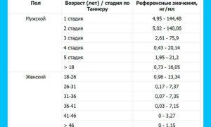 Подробно об анализе АМГ норма в таблице по возрасту