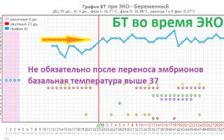 Ректальная температура после Эко