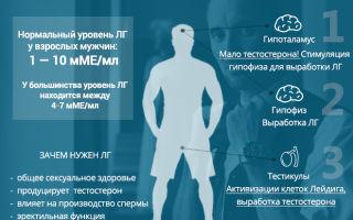 Лютеинизирующий гормон у мужчин