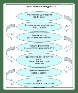 схема протоколов эко
