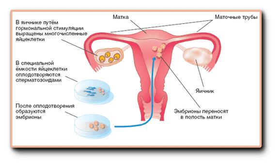 minet-vdvoem-i-sperma-foto