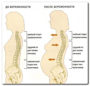 схема изменения скелета