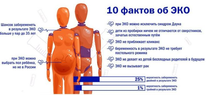 Факты об ЭКО
