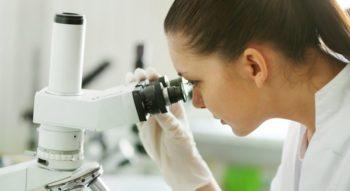 Наблюдение за оплодотворенными яйцеклетками