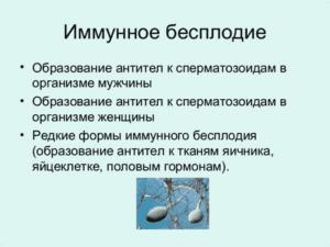 иммунное бесплодие